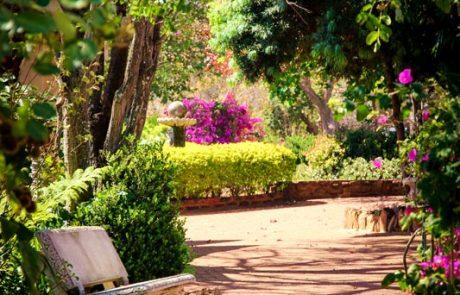 Margaret Roberts Herbal Centre - Garden Walkway