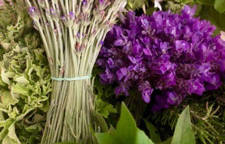 Fresh Botancials - Lavender Bunches (100 stems)
