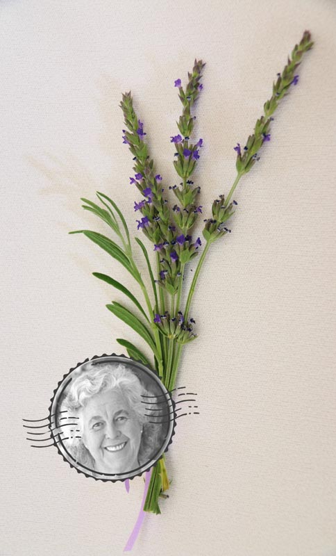 The Margaret Roberts Lavender