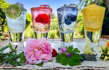 Magalies Lavender Gin